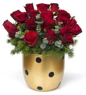 Saksı çiçekleri Saksı çiçeği Siparişi