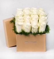 Kutuda 16 Beyaz Gül Amor