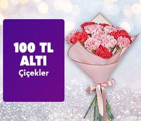 100 tl altı çiçekler